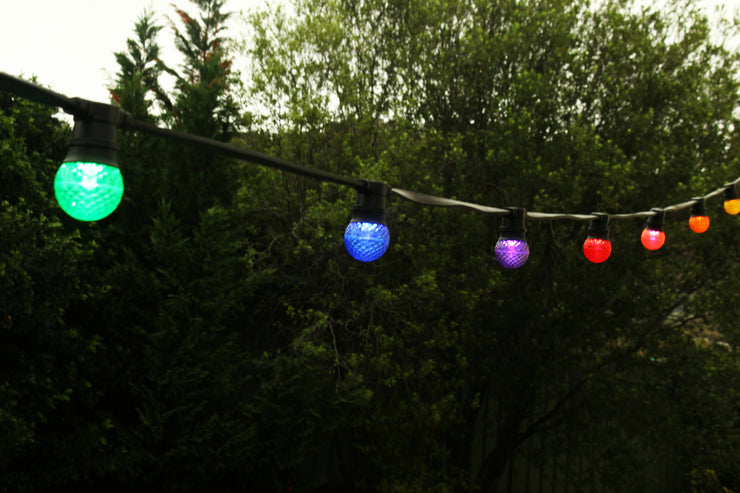 G50 Faceted E27 Decorative Festoon Bulb - String