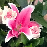Load image into Gallery viewer, Oriental Lilies and Roses are a wondrous partnership!  A Little Something = 6 roses + 1 Lily = $39.95  Something Special =12 roses + 3 lilies = $79.95  The Full Monty = 12 roses + 6 lilies = $105.95  Knock Your Socks Off =12 roses and 12 lilies =$155.95 - shown in picture  Available in Passion Red, Bella Pink, Perfect White