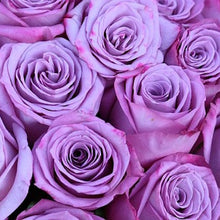 Load image into Gallery viewer, Mudgee florist Mudgee Monkey is a local based florist in the Mudgee Area. Pictured is a generous bouquet mauve roses. Valentines day  Free delivery and mothers day