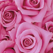 Load image into Gallery viewer,  Mudgee florist Mudgee Monkey is a local based florist in the Mudgee Area. Pictured is a generous bouquet pink roses. Valentines day Free delivery and mothers day