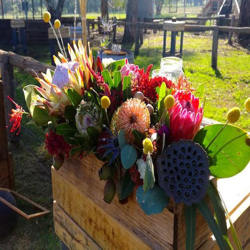 mudgee Monkey is a locally based Mudgee florist who specialises in bespoke flower bouquets and arrangements made from native Mudgee flowers. Arrangements can be tailored for any occasion and are delivered daily from Monday-Friday.