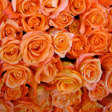 Load image into Gallery viewer,  Mudgee florist Mudgee Monkey is a local based florist in the Mudgee Area. Pictured is a generous bouquet of orange roses. Valentines day Free delivery and mothers day