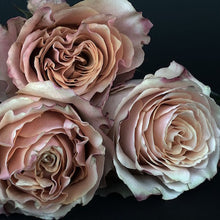 Load image into Gallery viewer,  Mudgee florist Mudgee Monkey is a local based florist in the Mudgee Area. Pictured is a generous bouquet of taupe roses. Valentines day Free delivery and mothers day