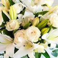 Oriental Lilies and Roses are a wondrous partnership!  A Little Something = 6 roses + 1 Lily = $39.95  Something Special =12 roses + 3 lilies = $79.95  The Full Monty = 12 roses + 6 lilies = $105.95  Knock Your Socks Off =12 roses and 12 lilies =$155.95 - shown in picture  Available in Passion Red, Bella Pink, Perfect White