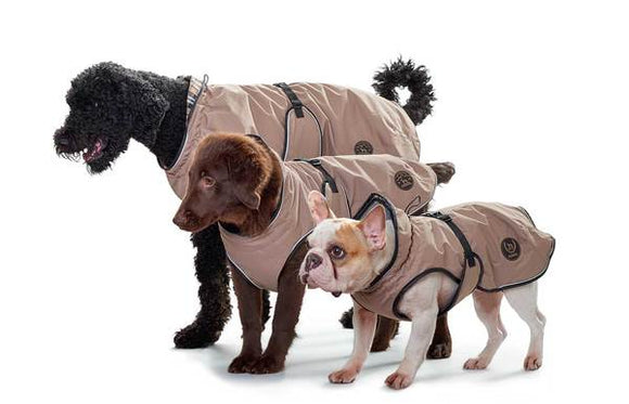 HUNTER | Dog Coat - Uppsala