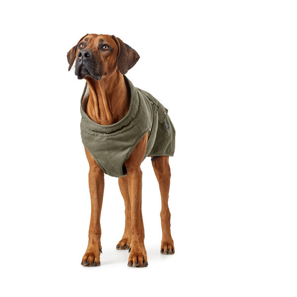 HUNTER | Dog Coat - Uppsala Trend