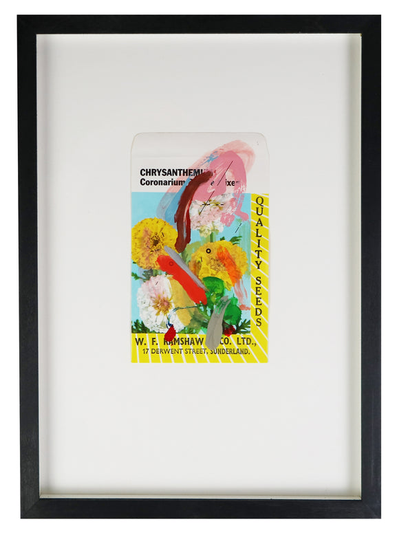 Adam Bridgland - Bloom I - Flower Packet Collage - Chrysanthemum (Framed)
