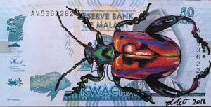 Louise McNaught - Frog-Legged Leaf Beetle on Malawian Kwacha