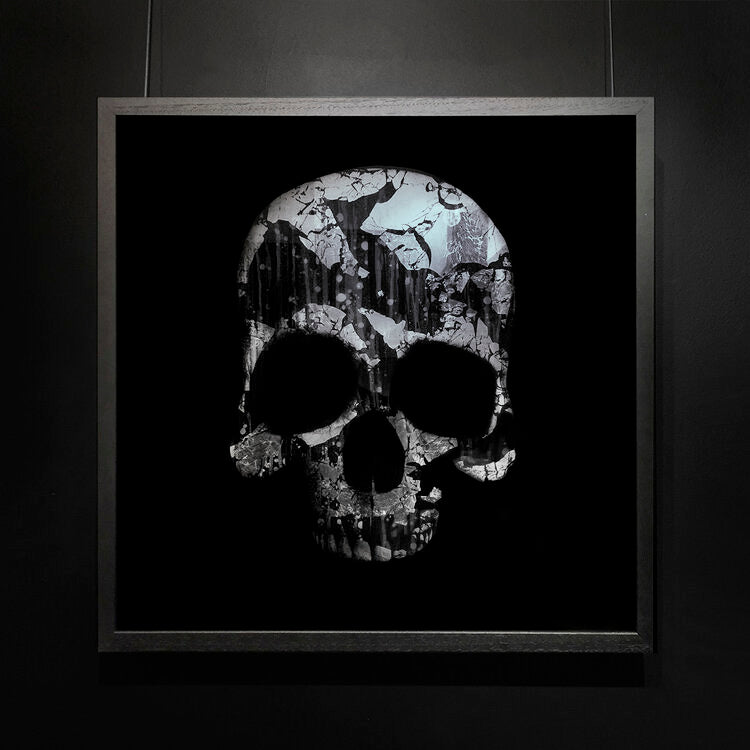 Mark Petty - The Architect of Extinction 1 - Silver Skull