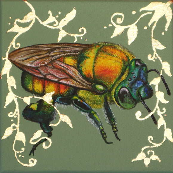 Louise McNaught - O Is For Orchid Bee