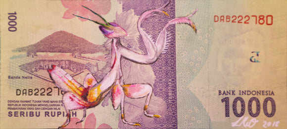 Louise McNaught - Orchid Praying Mantis on Idonesian Rupiah