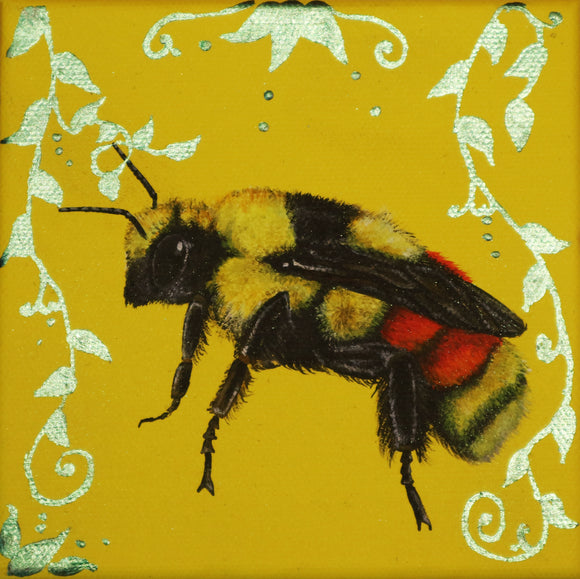 Louise McNaught - Tri-Coloured Bumble Bee