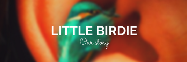 The magic behind Little Birdie