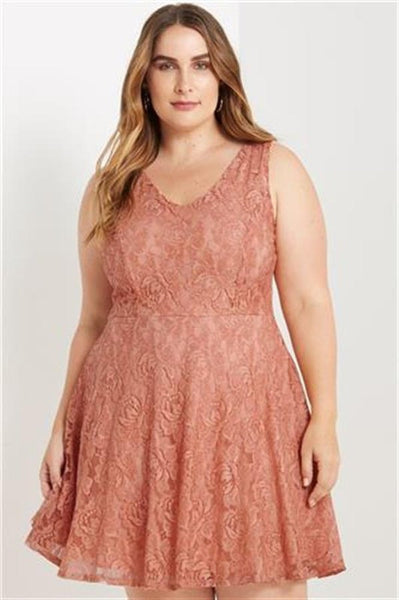 V Neck Lace Fit and Flare Dress in Blush