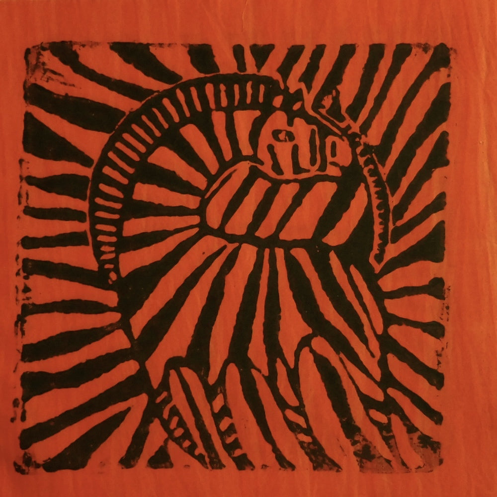 South African Panel - Zebra in Reddish Orange