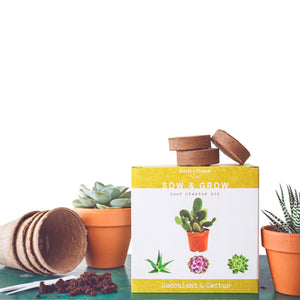 Succulents & Cactus Kit - Mix of Popular Plants to Grow From Seed