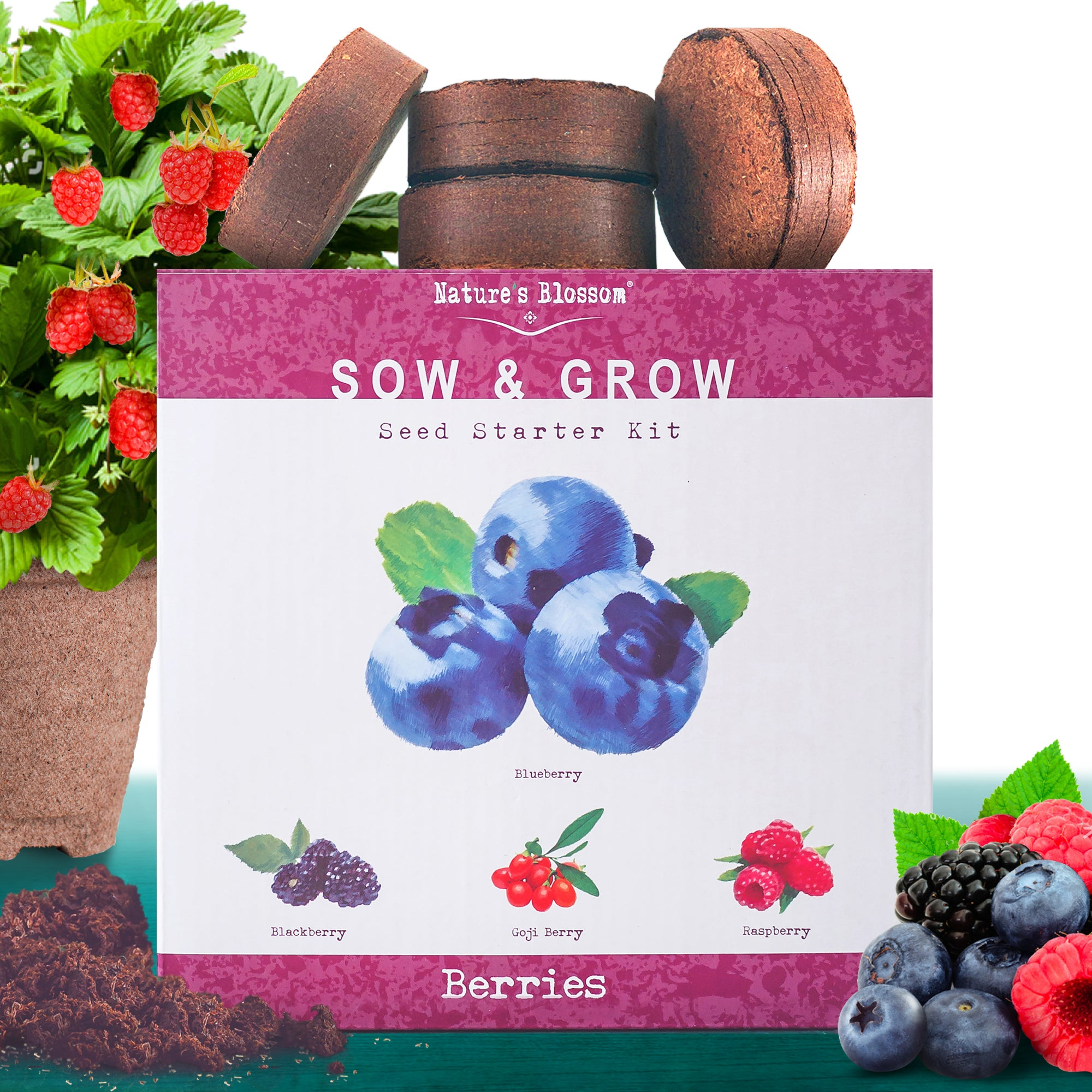 Fruit Growing Kit - 4 Types of Berries to Grow From Seed