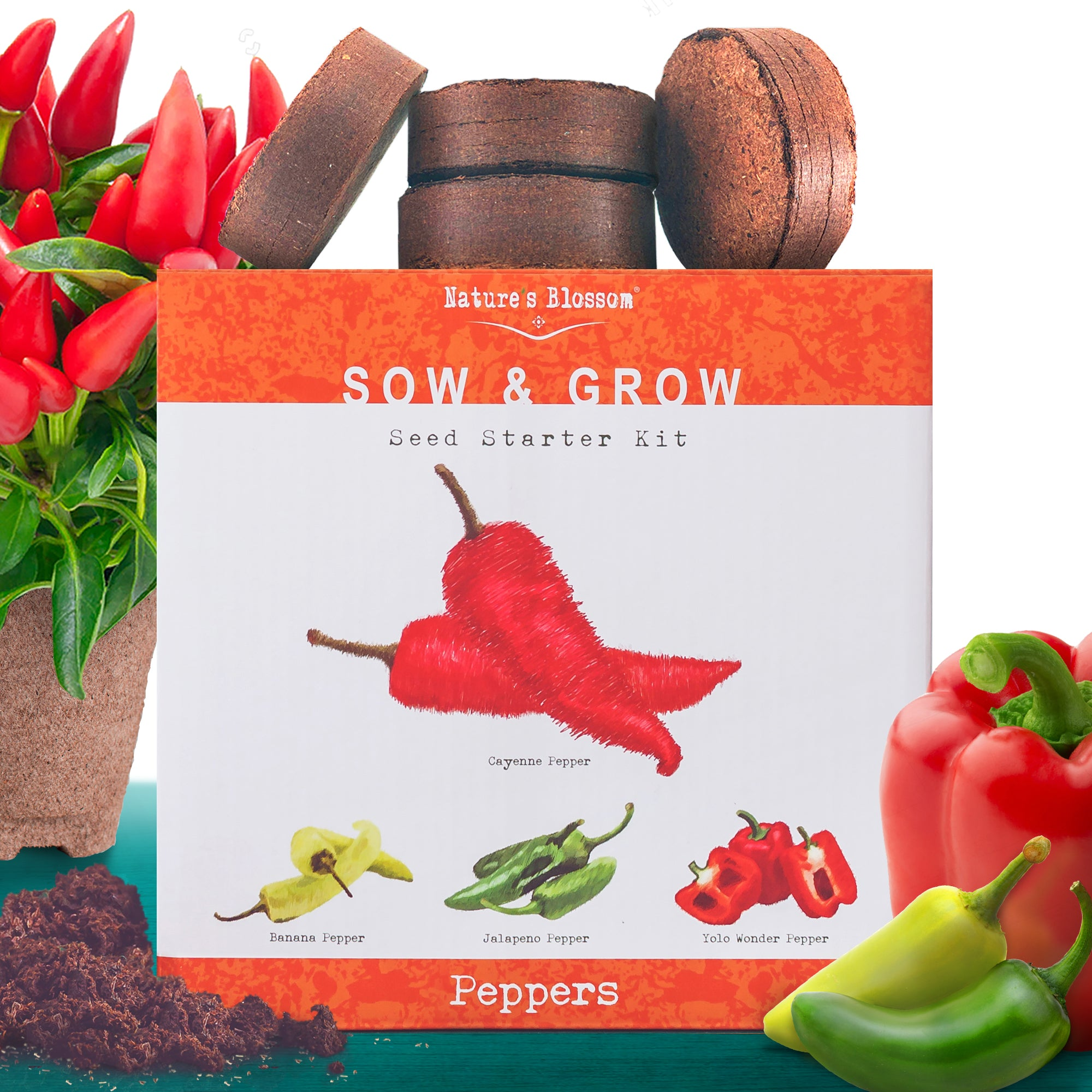 Peppers Growing Kit  - 4 Colorful Peppers to Grow From Seed