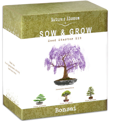 Nature's Blossom Bonsai Tree Kit - Grow 4 Types of Trees from Seed