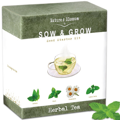 Herbal Tea Kit - 4 Types of Herbs to Grow From Seed