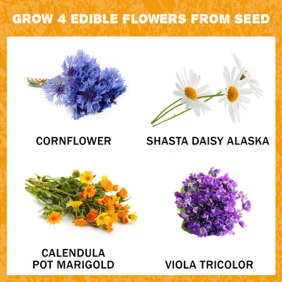 Edible Flower Kit - 4 Types of Culinary Flowers to Grow From Seed