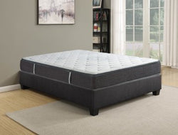 10 Inch Invigorate King Size Pocket Coil Mattress by Rest Therapy