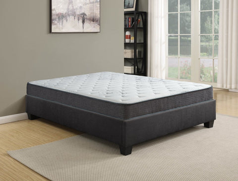 9 Inch Exhilarate King Size Pocket Coil Mattress by Rest Therapy