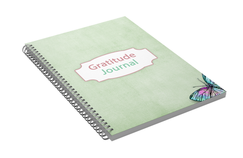 Gratitude Journal (30 Days of Gratitude Workbook)