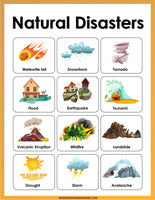 Natural Disasters Activity Set