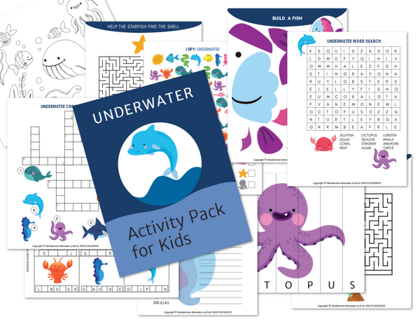 Under the Sea Activity Kit for Kids