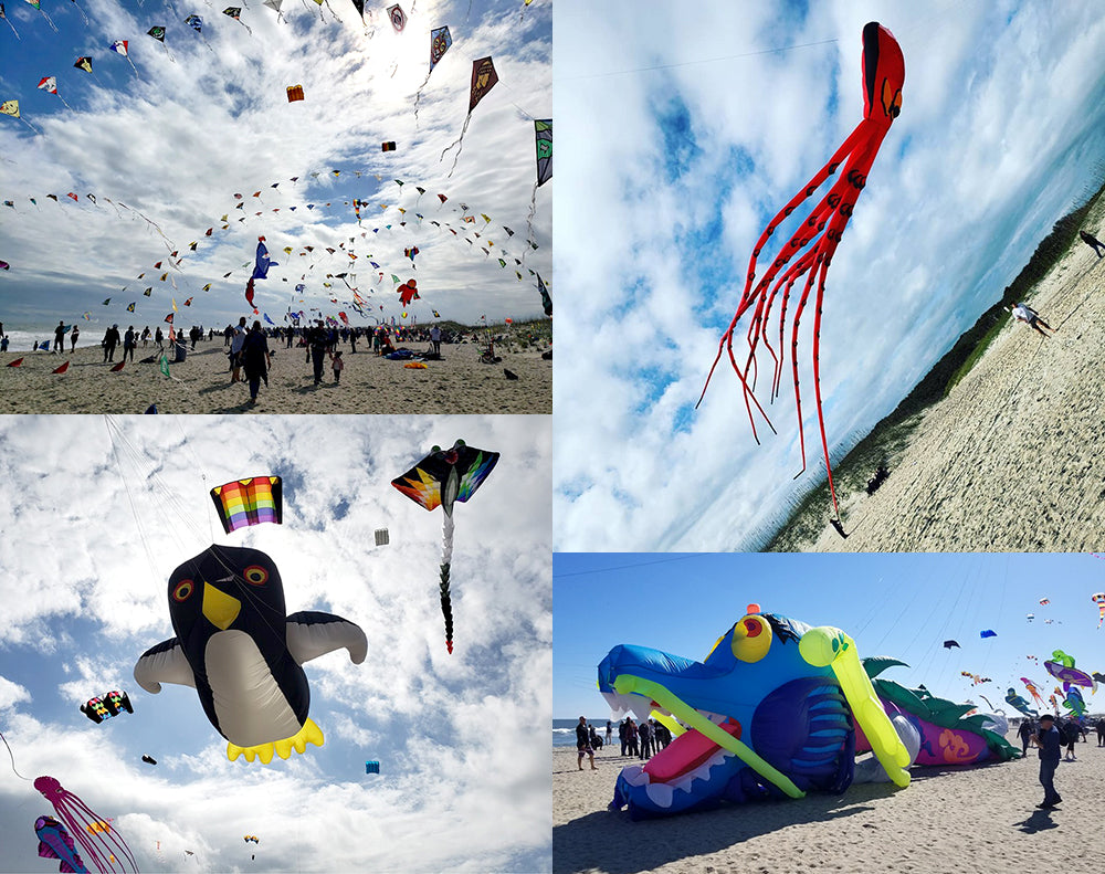 Cape Fear Kite Festival Collage