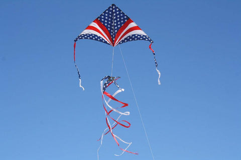 Patriotic In Flight