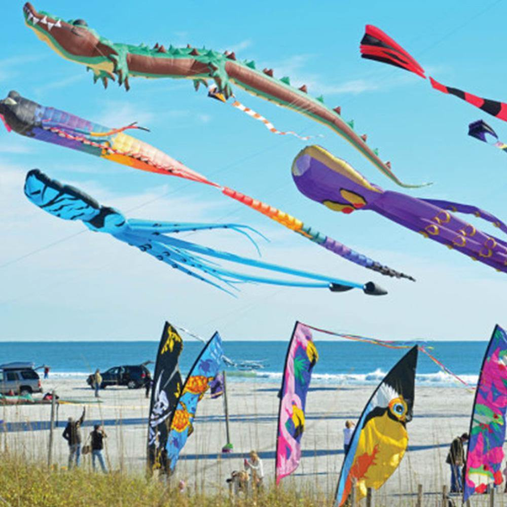 Blow in the Wind Kite 550 Piece Puzzle - Kitty Hawk Kites Online Store
