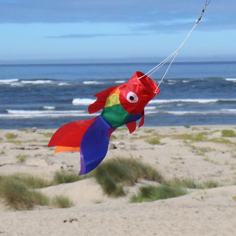 15 Inch Rainbow Damsel Fish - Kitty Hawk Kites Online Store