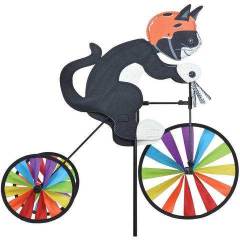 Tuxedo Kitten on Bike