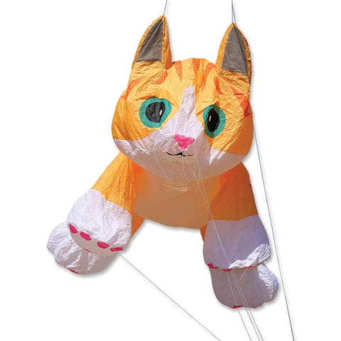 16 ft. Ginger Tabby Kitten Line Laundry - Kitty Hawk Kites Online Store