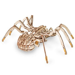 Eco Wood Art: Spider Puzzle
