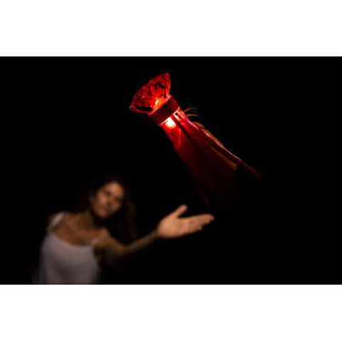 Waboba Flyer LED (Red) - Kitty Hawk Kites Online Store