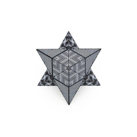 Shashibo Shape Shifting Box - Black and White