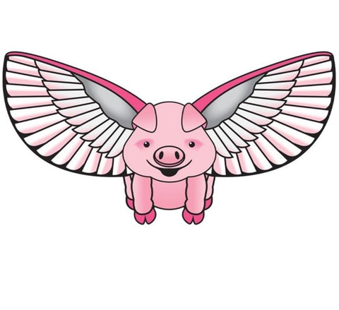 Flying Pig Kite