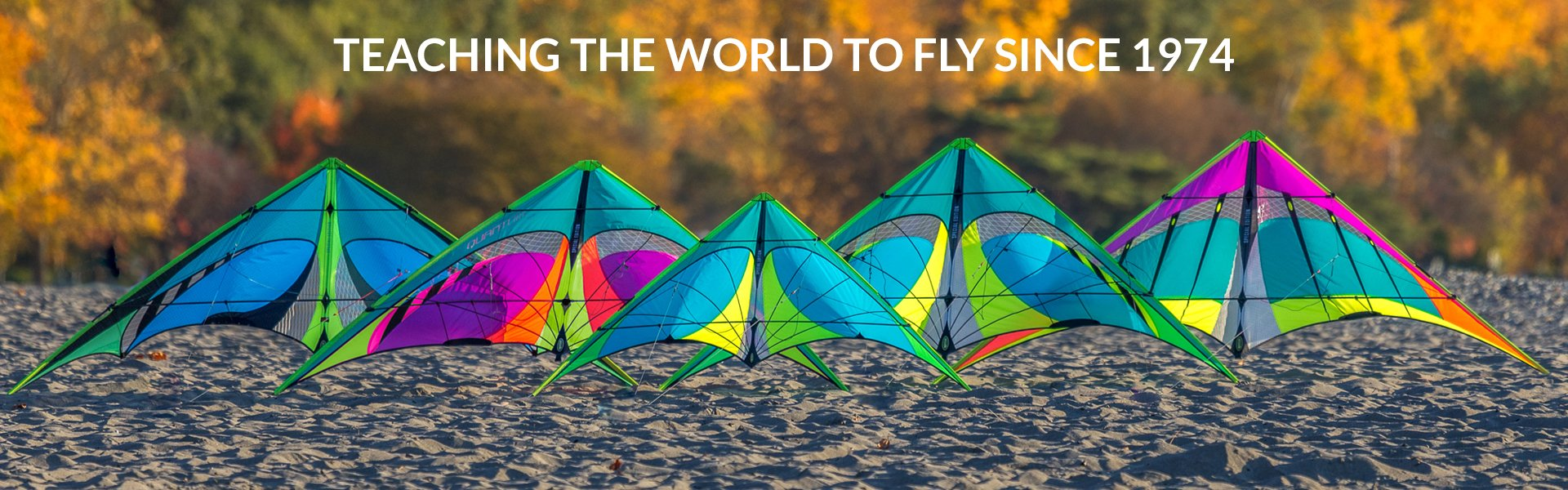 Kites For Every Age and Skill Level