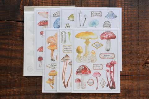 LCN Stickers - Fungus