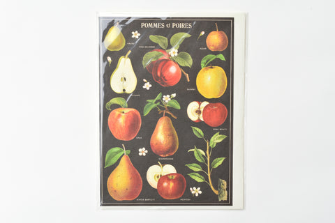 Apples and Pears Greeting Card
