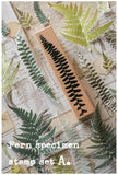 LCN Fern Specimen Stamp Set A