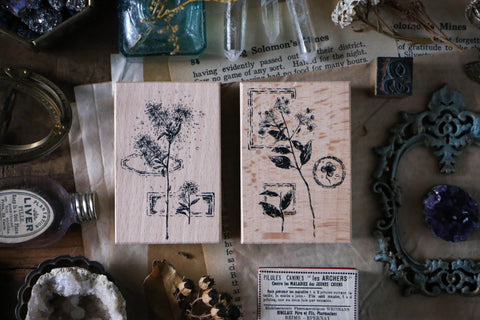 LCN Dried Flower Stamp Set C