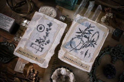 LCN Dried Flower Stamp Set D
