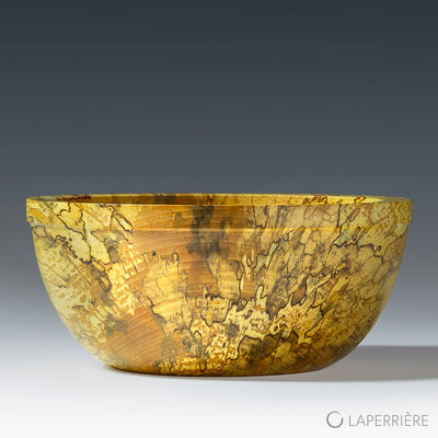 Spalted Storm Bowl
