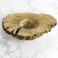Wild Elderberry Burl Bowl