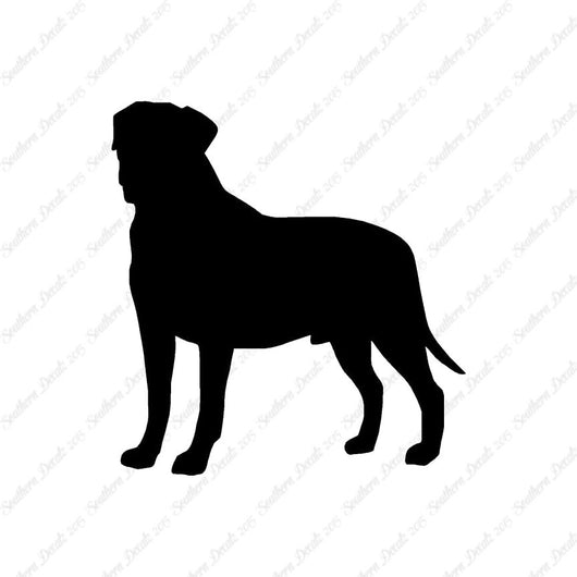 Bullmastiff Dog Breed