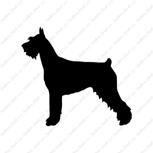 German Schnauzer Dog Breed